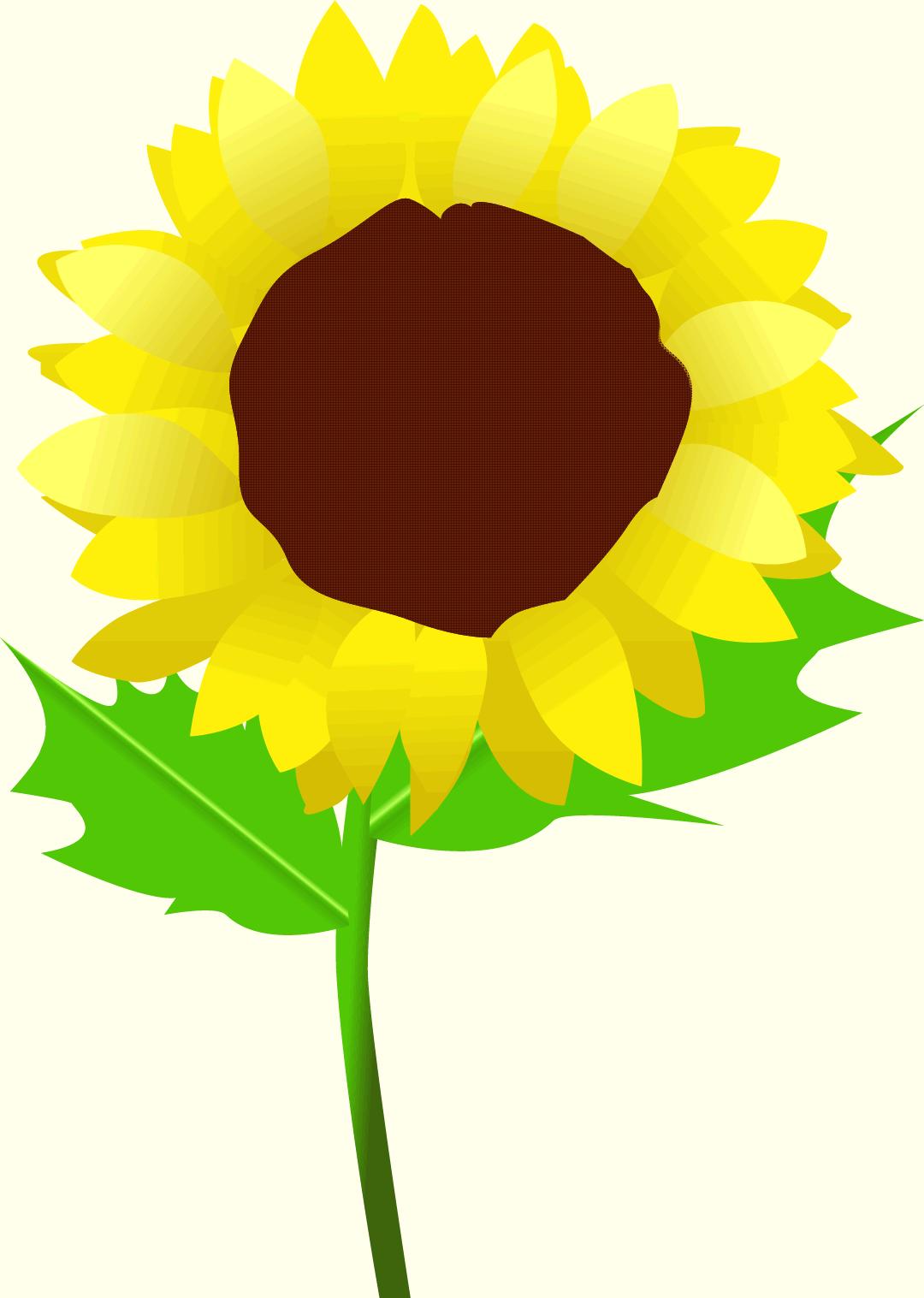 暑中見舞い・残暑見舞い・イラスト/テンプレート/フォトフレーム-夏の